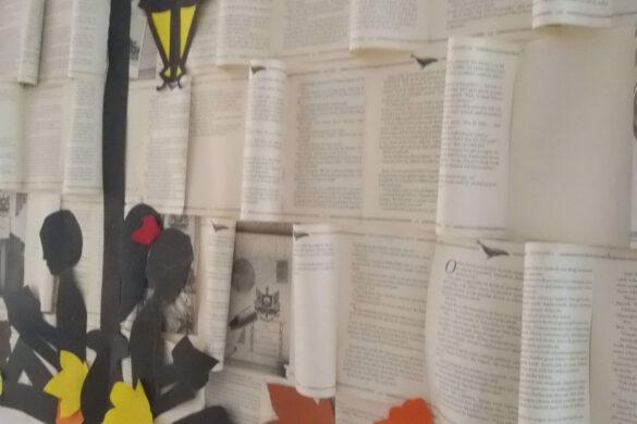 8 Eylül Dünya Okuma Yazma Günü…